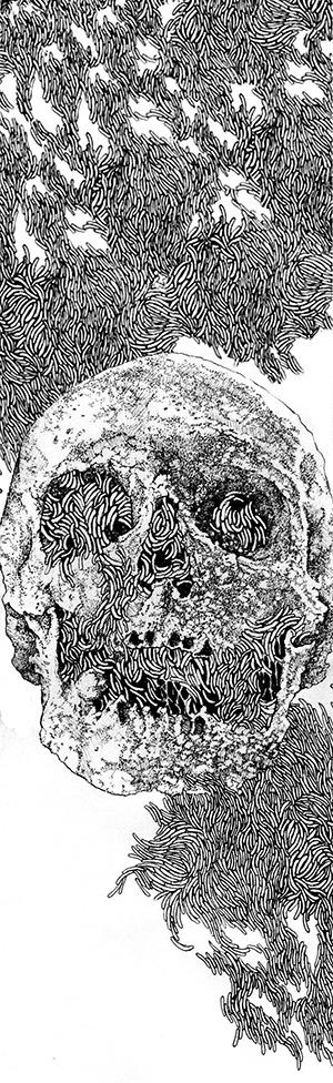 Maggot Skull version II [longer]
